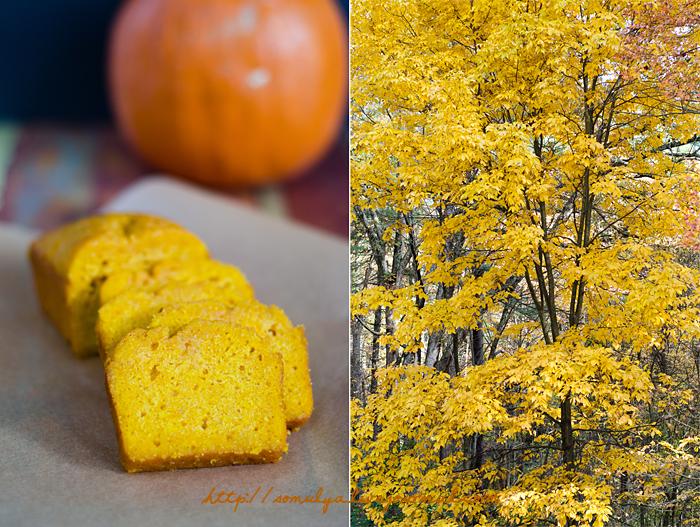 pumkin_corn_bread_leaves