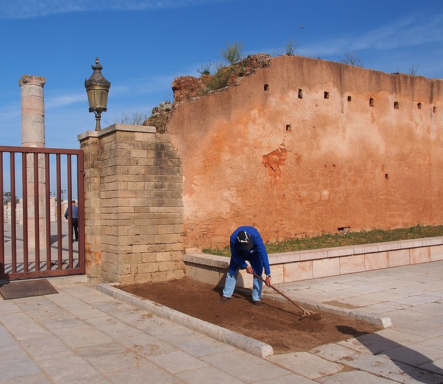 Hassan Tower-門口的衛兵呢?