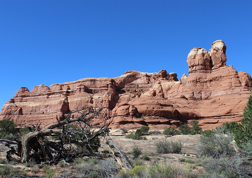 IMG_2650a_Canyonlands_NP_Needles_District