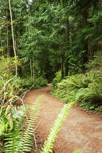 Mount Parke Park, Mayne Island, Southern Gulf Islands, British Columbia