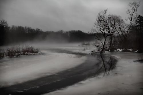 trees winter mist ice monochrome fog landscape day ipswichriver northreading ipswichriverpark