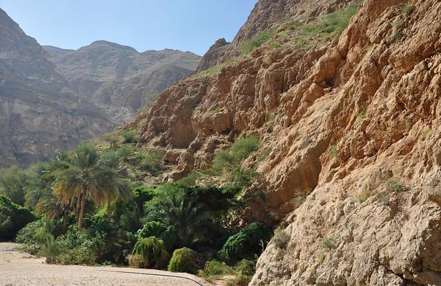 Wadi Shab (24)