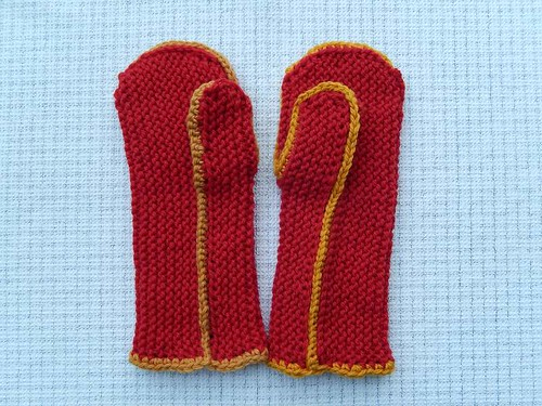 Pair of Cozy Mittens