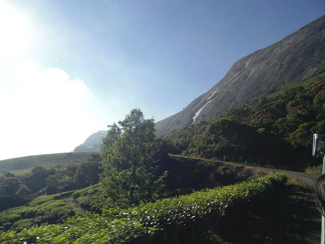 A view of Anamudi Peak en route to Eravikulam Nationa Park, Munnar