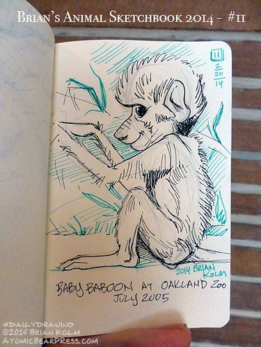 02-20-2014 #dailydrawing #animals baby Baboon