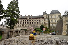 Travels of badger - Château Royal de Blois