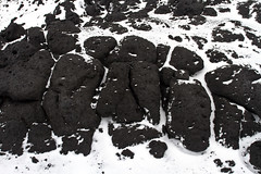 21571-Lava-rocks-&-snow-at-Cape-Royds