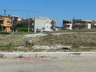 L'area ex ospedale priva dell'erba incolta (2)