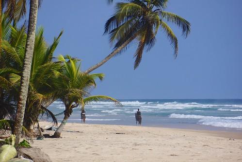 costa beach de coast ivory côte plage mafia plages divoire marfil assinie