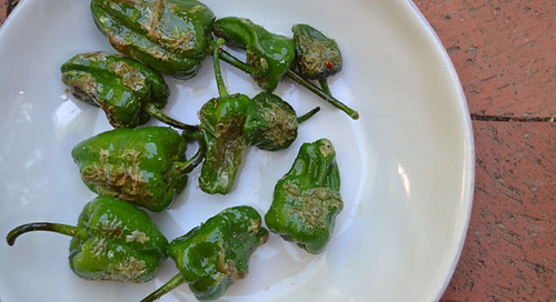 Padron-Peppers-Recipe
