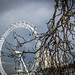 London eye & tree
