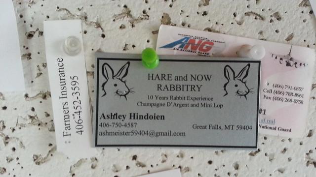Header of rabbitry
