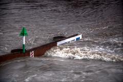 Dresden Flood 2013