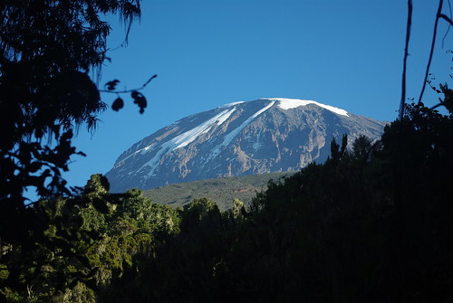 9195893742 8576d75981 Thomson Safaris Review: Everyone in the group made it to the summit of Kilimanjaro!