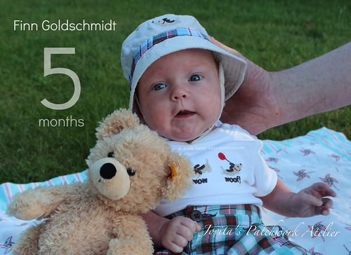 5 month Finn & Fynn