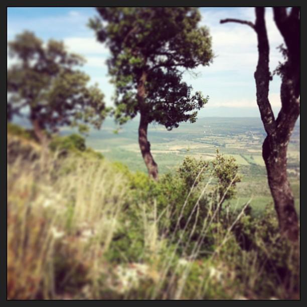 Provence III