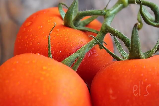 Pâtes aux aubergines