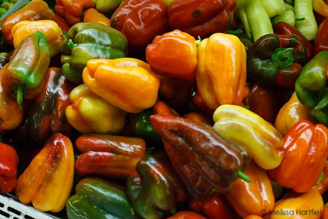 Multi-coloured Okanagan Peppers