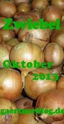 Garten-Koch-Event Oktober 2013: Zwiebel [31.10.2013]