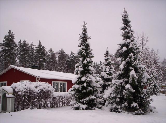 Nieve, árbol y cabaña