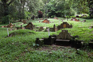 Bukit Brown cemetary