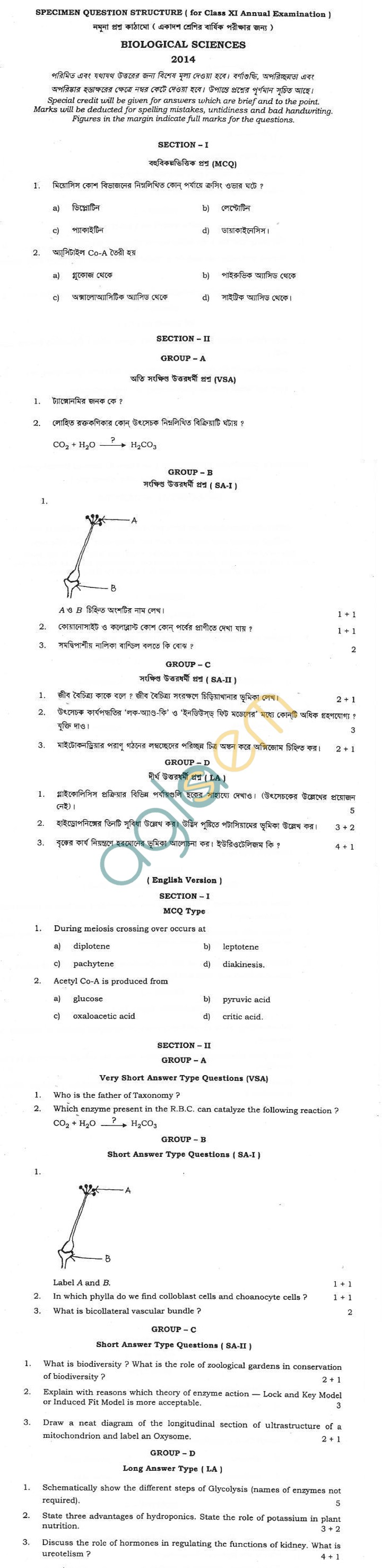 West Bengal Board Sample Question Paper for Class 11 - Biological Sciences
