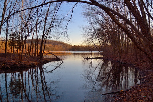 trees lake water reflections river nikon stream springtime ramaporiver d3100 smack53