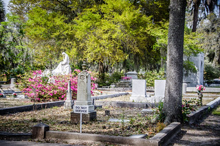 Bonaventure Cemetery-7