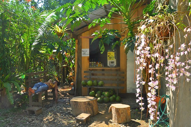 Wine and Buko Store