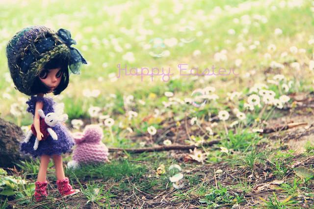 Printemps, été, automne ... et mise à jour avant l'hiver p14 - Page 9 13951199843_831668d382_z