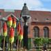 Flowers in Christiansborg Slotpads