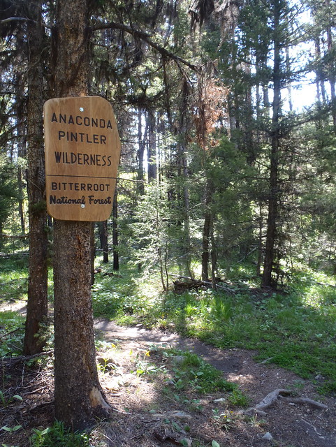 Anaconda-Pintler Wilderness