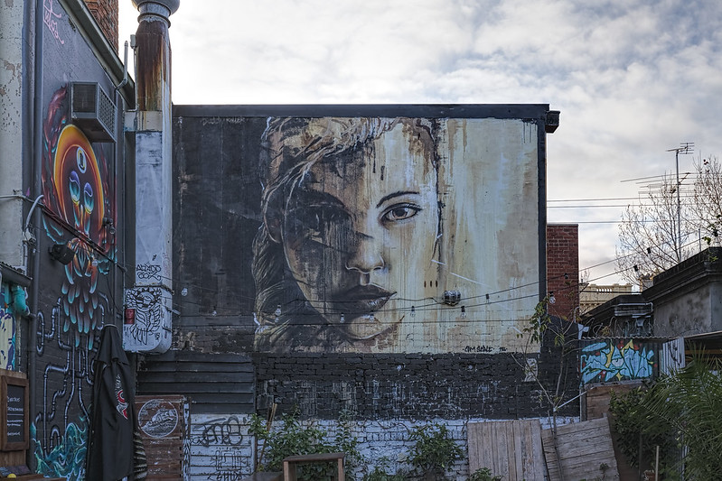 Cam Scale Fitzroy 2015-07-18 (_MG_1724)