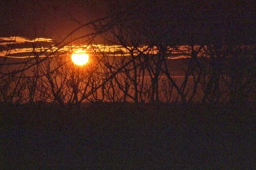 sunsetphotography sunsets sunset cloudsandsky clouds illinois mattoonillinois