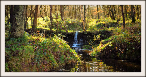 wharncliffe woods waterfall southyorkshire deepcar