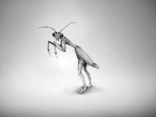 Adonna Khare, grasshopper_sm
