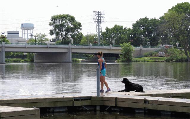 Dog Dock Jumping Near Me