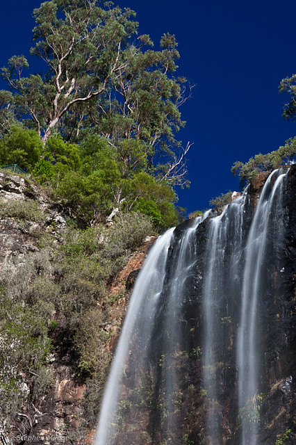 Springbrook National Park 2