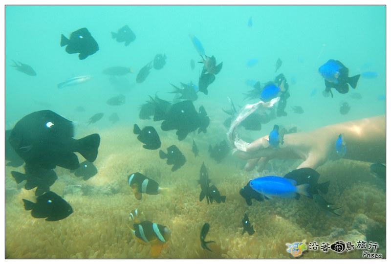 2013歐船長東海休閒漁業_88