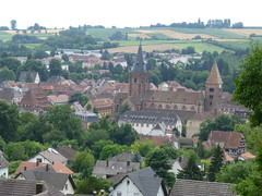 Blick auf Wissembourg von den Weinbergen