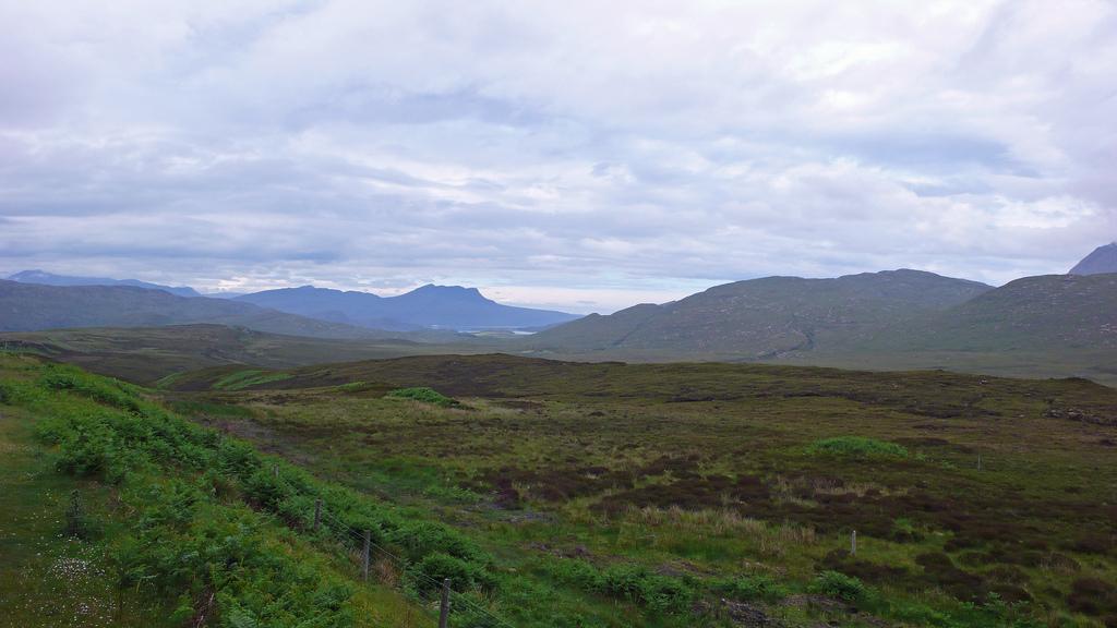 9. Brezales, la vegetación típica de las Highlands. Autor, Michel27