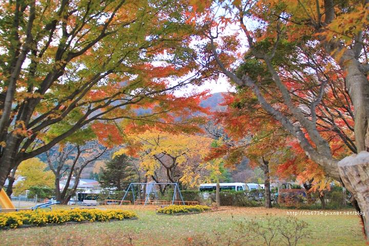 20111110_WuFamilyJapan_2910 f