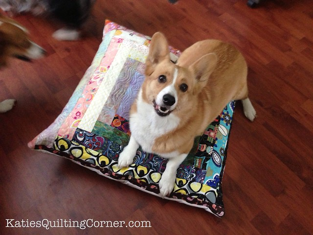 Quilt as you go dog pillow
