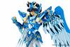 [Imagens] Saint Seiya Cloth Myth - Seiya Kamui 10th Anniversary Edition 10064652025_5febb315f8_t