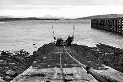 Sea dogs - Port Glasgow GB