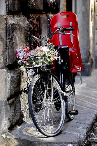 Bicicletta modello Primavera