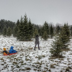 Wandering through a snow globe. #happytrees #hugeflakes #winter #vermont #peanutgallery #groms #huckingsnowballs