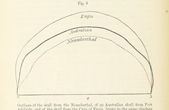 Image taken from page 112 of 'The Geological Evidences of the Antiquity of Man, with remarks on theories of the origin of species by variation. Illustrated by woodcuts'