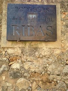 Que visitar en Mallorca: bodegas Ribas
