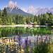 Dolomites - Le Pale di San Martino 36 by ignacio izquierdo